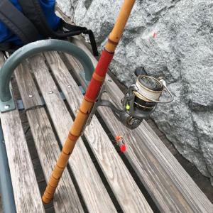 2019年 ハゼ釣り その5 横浜桜木町