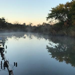 2019年 ヘラブナ釣り その13 海老名三つ池