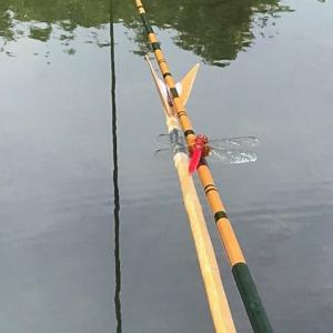 2020年 ヘラブナ釣り 三つ池