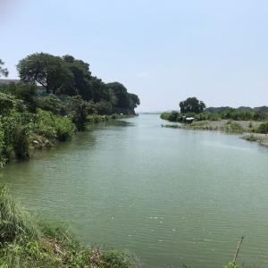 2020年 ヘラブナ釣り 新しい場所で 三段の滝その1