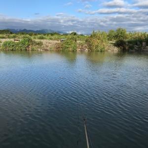 2020年 ヘラブナ釣り 三段の滝 その5 五目釣り
