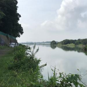 2020年 ヘラブナ釣り 三段の滝 その6 8目釣り?