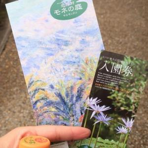 別世界を味わえる 北川村 モネの庭 マルモッタン