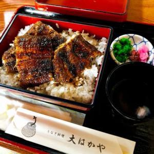 松江でうなぎを食べるなら。初めて大はかやに行ってきました
