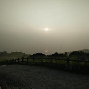 空気がおいしい、朝散歩【断捨離トレーナー合宿】