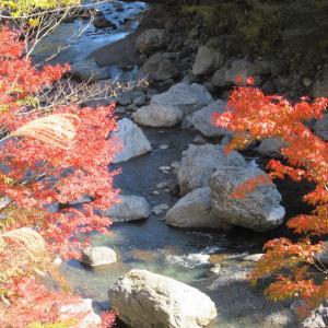 過去の繁栄の跡、徳島県上勝町 殿川内渓谷を行く!?