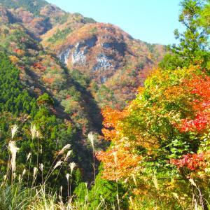 京都の東福寺も良いが、紅葉は大自然で・・・ in 徳島南部!?
