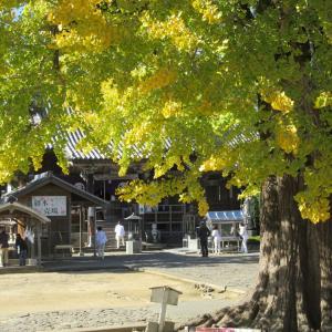 四国を駆ける秋の風景!?