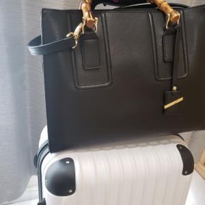 【ダイソー】見つけた!バッグのひやひやがなくなる便利グッズ♪