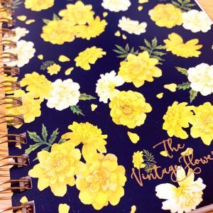 退院して日記を始める