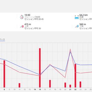 11月の月間走行距離は64キロ
