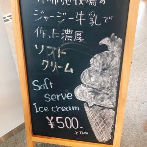 小布施牧場ソフトクリーム