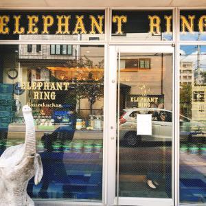 ELEPHANT RING エレファントリング