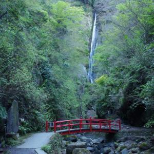 【南足柄】県立21世紀の森 と洒水の滝