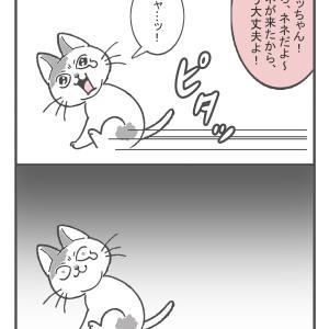 お風呂事件簿(2)