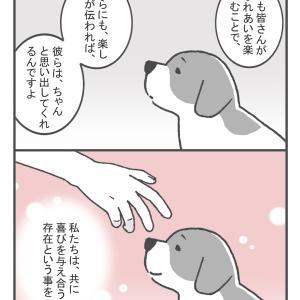 動物ボランティア1年生(4)