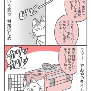 今年の漢字からペット防災を考える(4)