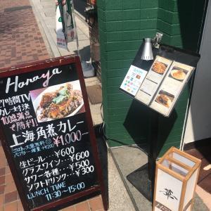 グリルアンドバー ハナヤ  新宿 上海角煮パクチーカレー