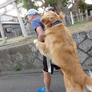 ママ体調不良にて近場散歩でお願いします