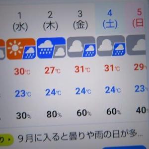 名古屋の暑い夏も今日までかな?