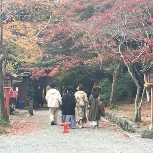【サロン近辺散策】一度は行って欲しい大原野神社