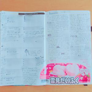 【手帳】バレットジャーナル5週め(1/27~2/2)