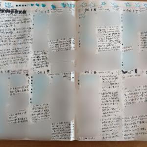 手帳の中身(バレットジャーナル25週め)