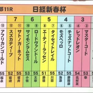 【決断】京成杯[G3]