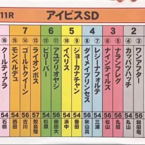【決断】アイビスSD[G3]