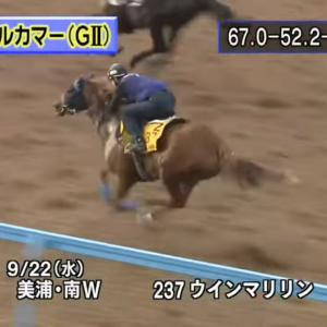 【回顧】神戸新聞杯 etc.