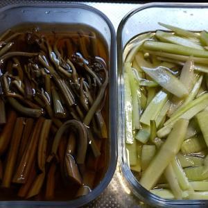 今日の晩ごはんと山菜で色々作り置き。