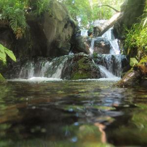 水道水から日本を考える