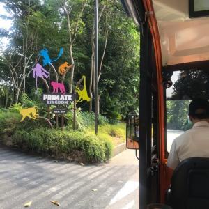 長女まる子とのシンガポール二人旅 その2