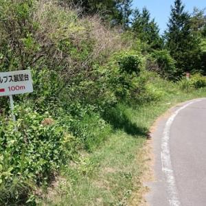 【結構】サブ4ペースで30km【しんどかった】
