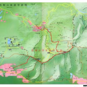 深圳 梧桐山 その2