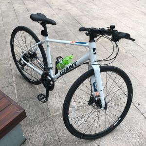 深圳  自行车♀️で走る