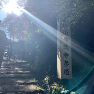 見事な紅葉♪   〜神護寺へ行ってきました〜