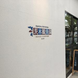 茨木観魚園さんへ