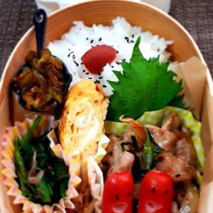 スタミナ焼き肉弁当と家庭菜園
