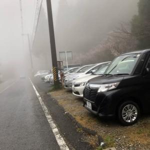 濃霧の中を