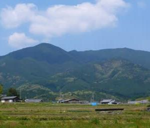金剛山 山歩きの相棒