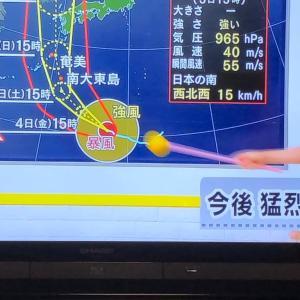 猛暑の次は台風と雨警戒‼️