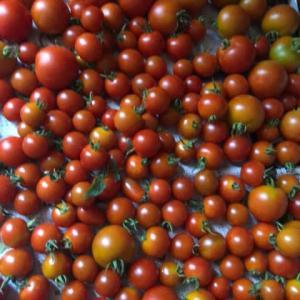 トマト派お好きですか⁉️