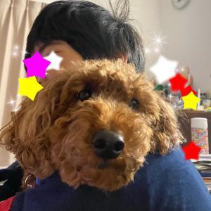 キスラジ♡お弁当作り3人分(ΘㅂΘ)