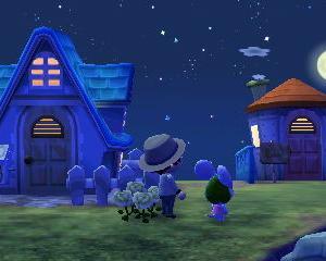 ◆とび森◆みんなでお月見!