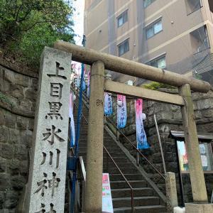 『らん散歩』(〃´д` ){…桜…*【目黒区大橋•上目黒氷川神社】
