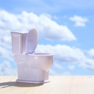 障害児unaさんのトイレが少し楽になったのは、幼いころに使っていたこれ。