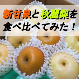 「新甘泉(鳥取の梨)」と「秋麗梨(熊本の梨)」を食べ比べ!特徴や時期は?