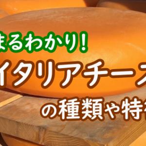 イタリア産チーズ19種類!これであなたもイタリアチーズ通!