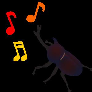 カブトムシの鳴き声をご存知?いつどんなときに鳴くの?